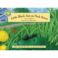 Little-black-ant