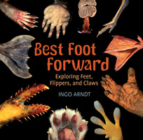 Best-Foot-Forward-larger