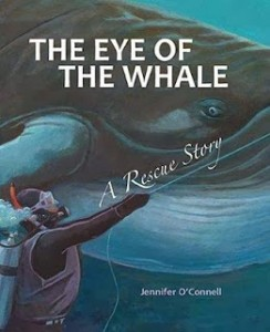 the-eye-of-the-whale