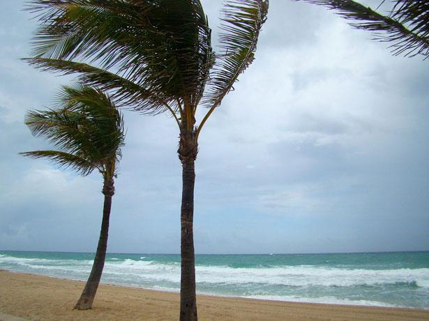 Public-domain-wind